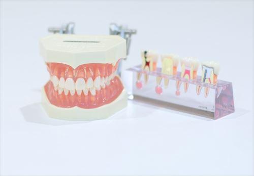 【35】妊娠中に歯医者に行っても良いの?