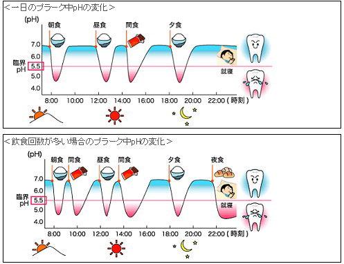 虫歯に注意!食事回数が多いとpHの低下が?