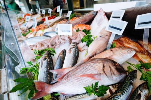 妊婦さんに魚は超オススメ!妊娠中に魚を食べるメリット