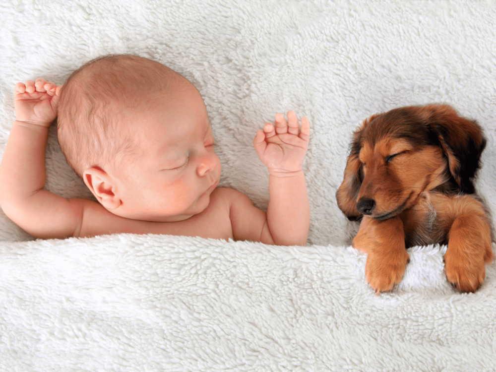 赤ちゃん用の布団は必要?いつまで使う?ベビー布団の正しい選び方は?